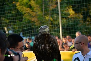 ФК Бастун - Лудогорец 1:3   Ариана Аматьорска Лига