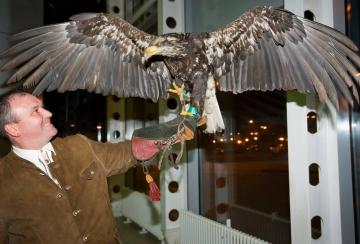 Лудогорец получи орелът от Лацио