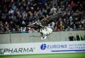 Феновете на Лудогорец избират име на орела